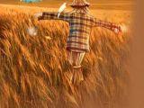 我就是一个农民的儿子-朋朋博客
